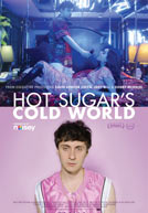 HotSugarsColdWorld-poster