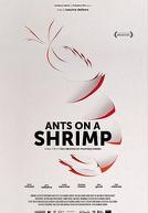 AntsOnAShrimp-poster