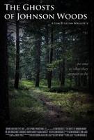 theghostsofjohnsonwoods-poster