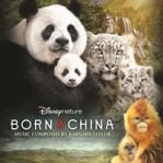borninchina_profile