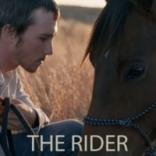 rider_profile