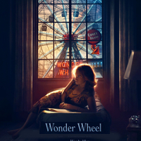 wonderwheel_profile