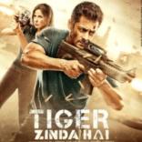 tigerzindahai_profile