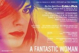 fyc_fantasticwoman2